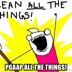 clean all the things -  PGAAP ALL THE THINGS!