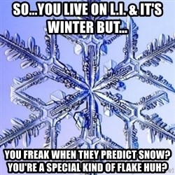 Special Snowflake meme - So...you live on L.I. & it's winter but... You freak when they predict snow? You're a special kind of flake huh?