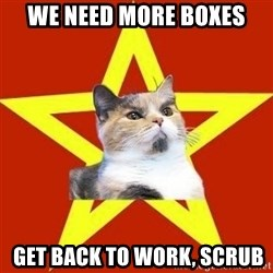 Lenin Cat Red - We need more boxes  get back to work, scrub