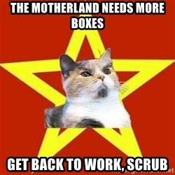Lenin Cat Red - The motherland needs more boxes get back to work, scrub