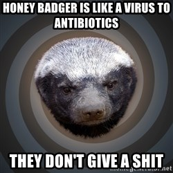 Fearless Honeybadger - Honey badger is like a virus to antibiotics they don't give a shit