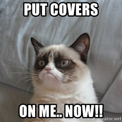 Grumpy cat good - put covers on me.. now!!