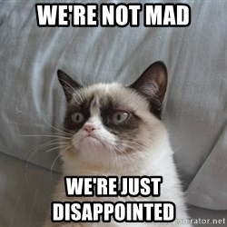 Grumpy cat 5 - we're not mad we're just disappointed