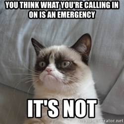 Grumpy cat 5 - you think what you're calling in on is an emergency it's not
