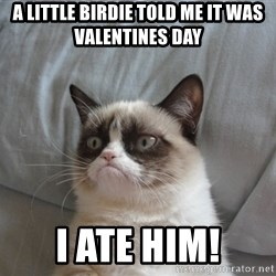 Grumpy cat 5 - A little birdie told me it was Valentines day I ATE HIM!