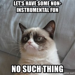 Grumpy cat good - Let's have some non-instrumental fun No such thing