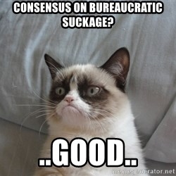 Grumpy cat good - Consensus on bureaucratic suckage? ..good..