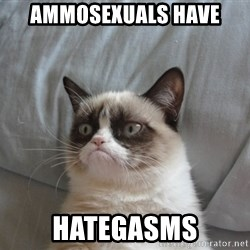 Grumpy cat good - AMMOSEXUALS HAVE HATEGASMS