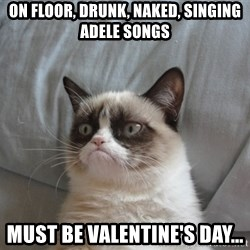 Grumpy cat good - On floor, drunk, naked, singing Adele songs Must be Valentine's Day...