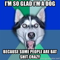 Spoiler Dog - I'm so glad I'm a dog because some people are bat shit crazy