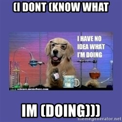 I don't know what i'm doing! dog - (I dont (know what Im (doing)))