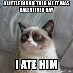 Grumpy cat 5 - a little birdie told me it was valentines day I ate him