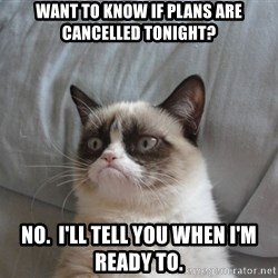 Grumpy cat good - want to know if plans are cancelled tonight? no.  i'll tell you when i'm ready to.