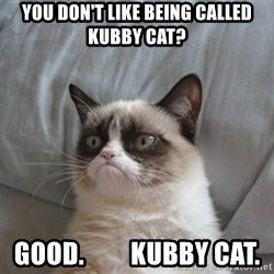 Grumpy cat good - you don't like being called kubby cat? good.         kubby cat.