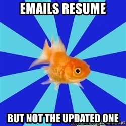 Absentminded Goldfish - emails resume but not the updated one