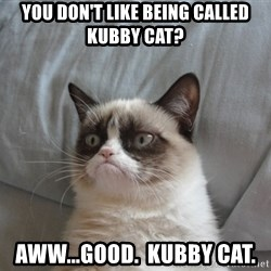 Grumpy cat good - you don't like being called kubby cat? aww...good.  kubby cat.