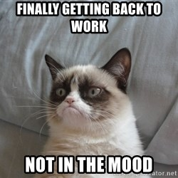 Grumpy cat good - finally getting back to work not in the mood