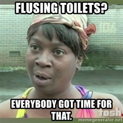Everybody got time for that - Flusing toilets? Everybody got time for that.
