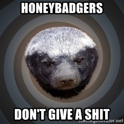 Fearless Honeybadger - Honeybadgers Don't give a shit