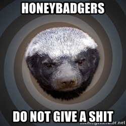 Fearless Honeybadger - Honeybadgers Do not give a shit