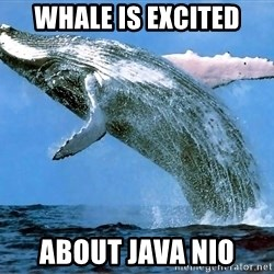 whaleeee - WHALE IS EXCITED ABOUT JAVA NIO