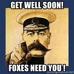 your country needs you - GET WELL SOON! FOXES NEED YOU !