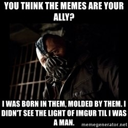 Bane Meme - you think the memes are your ally? I was born in them, molded by them. i didn't see the light of imgur til i was a man.