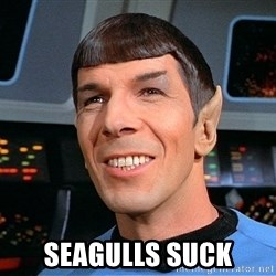 smiling spock -  SEAGULLS SUCK