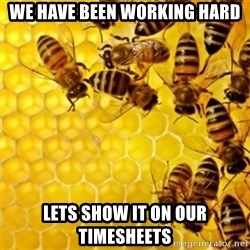 Honeybees - We have been working hard Lets show it on our timesheets