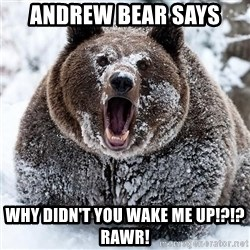 Clean Cocaine Bear - Andrew Bear Says Why didn't you wake me up!?!? Rawr!