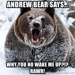 Clean Cocaine Bear - Andrew Bear Says... Why you no wake me up?!? Rawr!