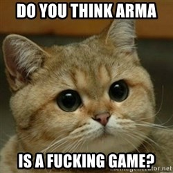 Do you think this is a motherfucking game? - DO YOU THINK ARMA  IS A FUCKING GAME?