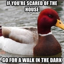 Malicious advice mallard - If you're scared of the house go for a walk in the dark
