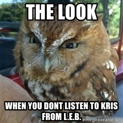 Overly Angry Owl - the look  When you dont listen to Kris from l.e.b.