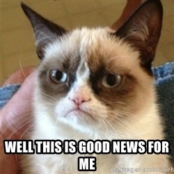 Grumpy Cat  -  well this is good news for me
