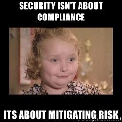 Honey BooBoo - Security isn't about compliance its about mitigating risk