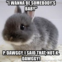"""ADHD Bunny - """"i wanna be somebody's baby"""" p. dawggy, i said that, not k. dawggy!"""