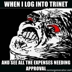 oh crap - When I log into TriNet and see all the expenses needing approval