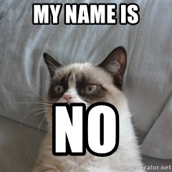 Grumpy cat good - My name is NO