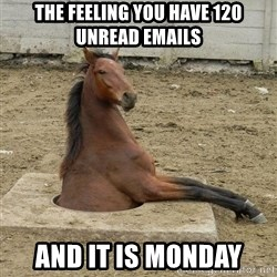 Hole Horse - the feeling you have 120 unread emails and it is monday