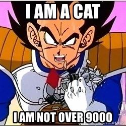 Over 9000 - i am a cat i am not over 9000