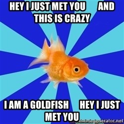 Absentminded Goldfish - hey i just met you       and this is crazy i am a goldfish      hey i just met you