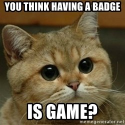 Do you think this is a motherfucking game? - you think having a badge is game?