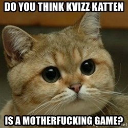 Do you think this is a motherfucking game? - Do you think kvizz katten is a motherfucking game?