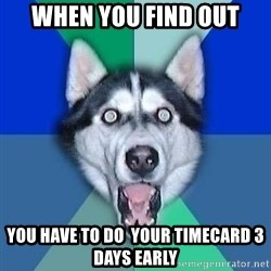 Spoiler Dog - When you find out you have to do  your timecard 3 days early