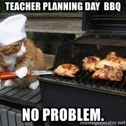 BBQ CAT - Teacher Planning Day  BBQ No problem.