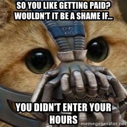 bane cat - So you like getting paid? Wouldn't it be a shame if... you didn't enter your hours