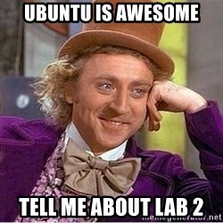Oh so you're - ubuntu is Awesome tell me about lab 2