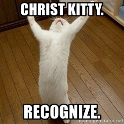 praise the lord cat - christ kitty. recognize.