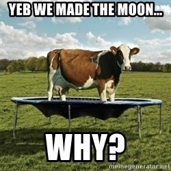 Unimpressionable Cow - yeb we made The Moon... Why?